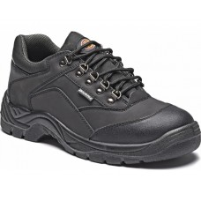 Dickies Norden Safety Shoe