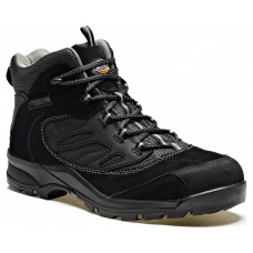 Dickies Dalton Safety Boot