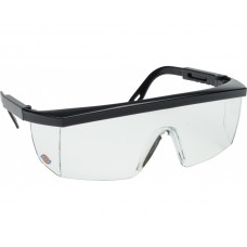 Dickies Visitors Safety Glasses