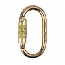 PW Safety Self Lock Carabiner